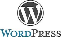Wordpress logo web design website development